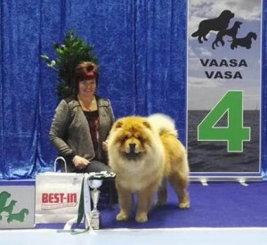Doug i Vasa